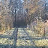 Givre matinal. Les Hautes-Lisières (Rouvres, 28), 14 janvier 2012. Photo : J.-M. Gayman