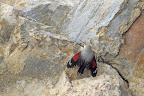 L'OISEAU PAPILLON   Sur une falaise calcaire, 2017