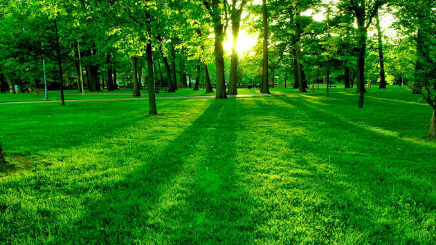 Beautiful World Nature Love Art Google