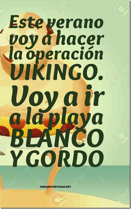 OPERACION VIKINGO2