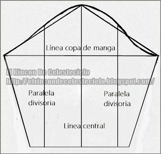 Manga básica dividida en cuatro partes