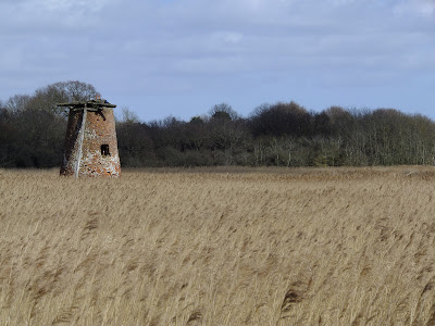The old Westwood Marsh Pumping Mill
