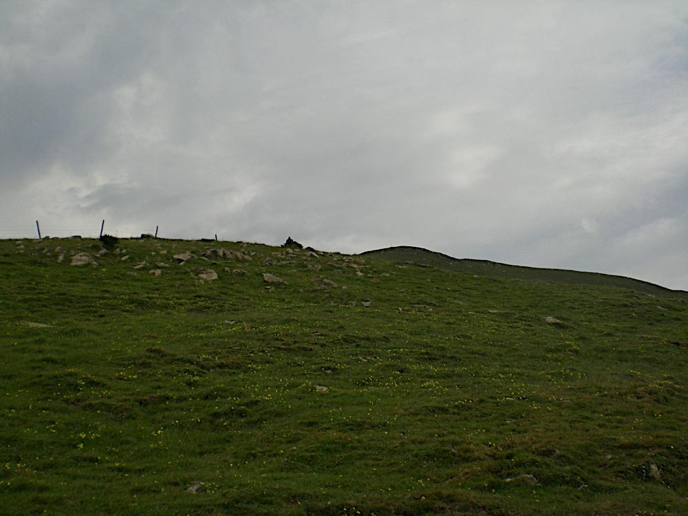 Taga 2006 - CIMG9300.JPG