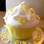 Bday Cake 20141130 Razia 21st.jpg