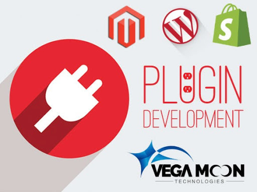 Vega Moon Technologies - Web Design and Software Development on Google