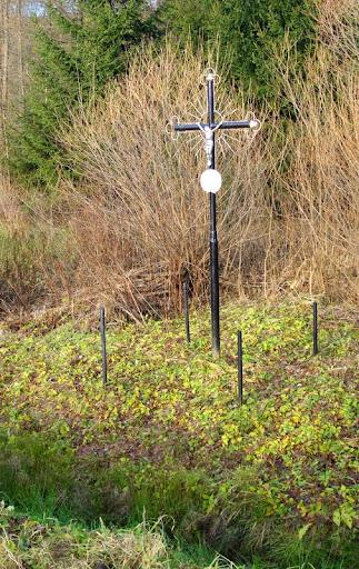 Leszczowate krzyż pańszczyźniany