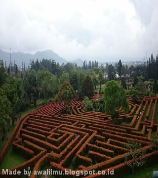 Foto Pemandangan Taman Labirin dari Ketinggian