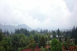 Foto Pemandangan Taman Labirin yang mempesona