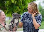 Maria Sharapova - Brisbane Tennis International 2015 -DSC_5893.jpg