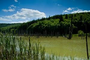 02-drumetie-lacul-cuejdel.jpg