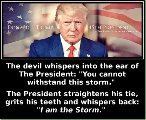 donald trump is the storm