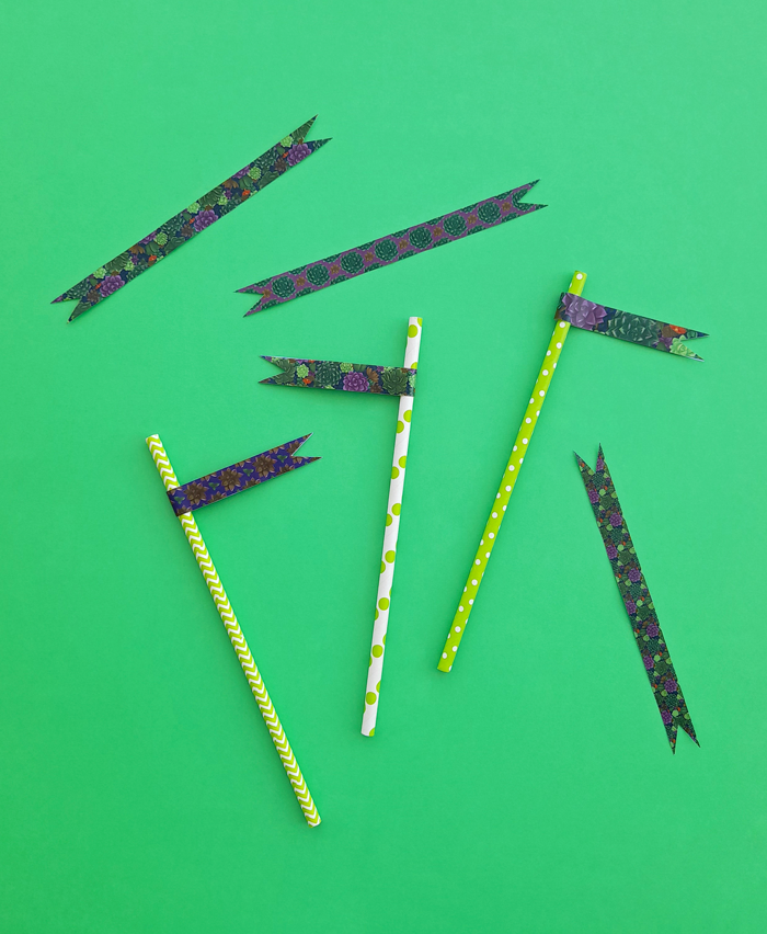 picnic, garden tea party, Summer, Spring, straws, dring stirrers, celebration, food, flags, toppers, succulents, plants, illustration, pattern