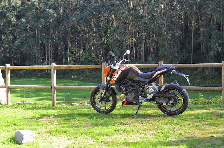 KTM DUKE 125 - Raphha DSC_0586