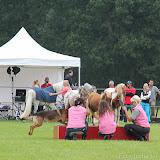Paard & Erfgoed 2 sept. 2012 (16 van 139)