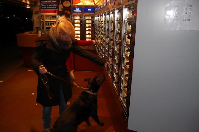 Jonge Hond centrum Emmen - 2012-04-01%2B023.JPG