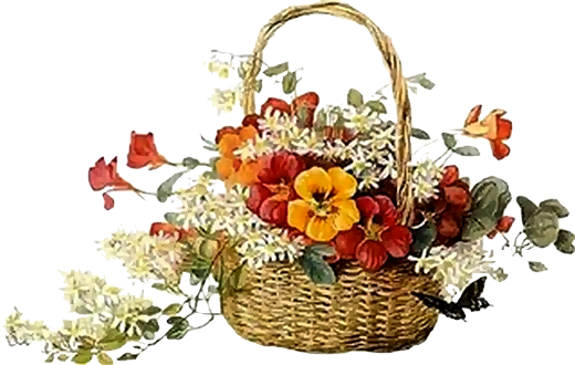 Resultado de imagem para tubes de flores