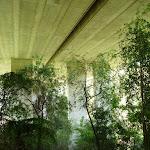 Walking under De Burghs Bridge (392369)