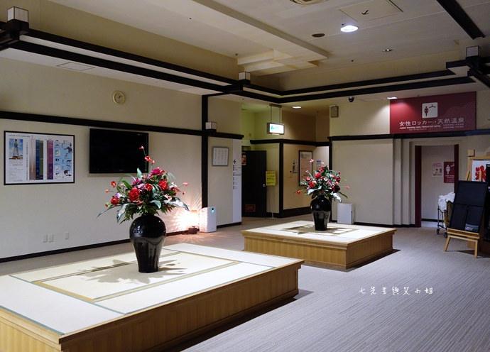 48 東京自由行推薦虎航tigerair 紅眼班機飛東京羽田初體驗 天然溫泉平和島