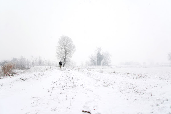 walking in the snow di vaiolet