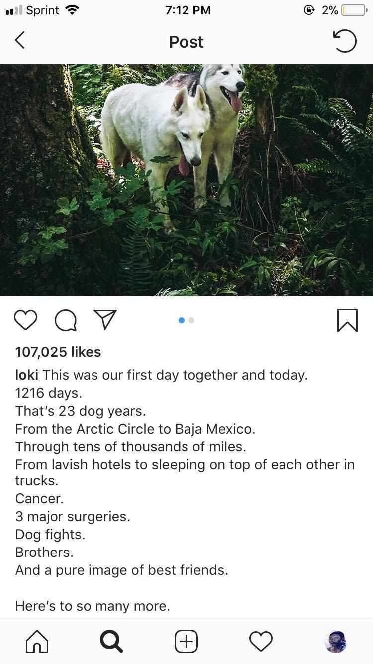 travel Instagram @loki