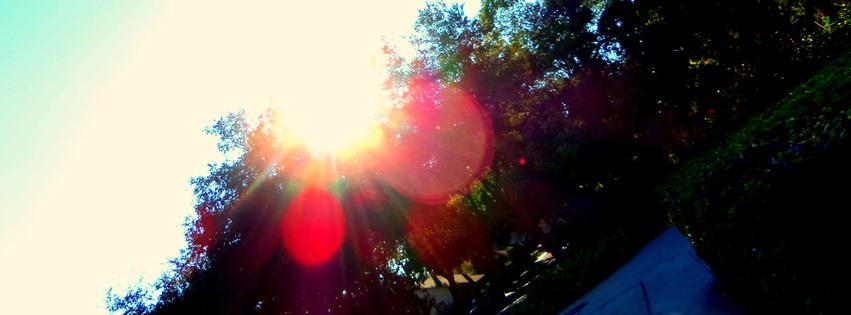 Göz alıcı güneş ışığı kapak fotoğrafları
