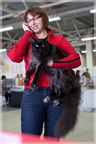 cats-show-24-03-2012-fife-spb-www.coonplanet.ru-028.jpg