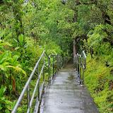 06-23-13 Big Island Waterfalls, Travel to Kauai - IMGP8852.JPG