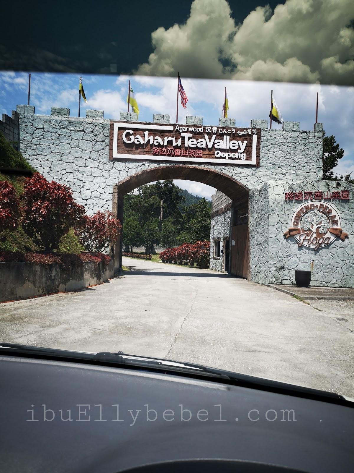 HOGA Gaharu Tea Valley Gopeng, Perak