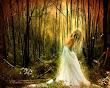 Forrest Fairy Girl