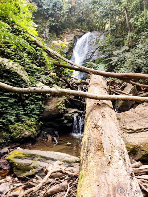 Wodden logs near falls