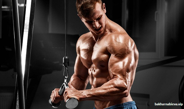Exercises To Build Triceps
