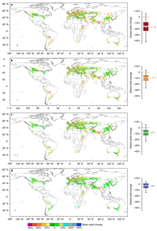 Average barley yield shocks during extreme events years. Graphic: Xie, et al., 2018 / Nature Plants