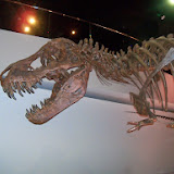 Houston Museum of Natural Science - 116_2685.JPG