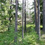 Kesäasuista FinnSpring 2017-maastoa