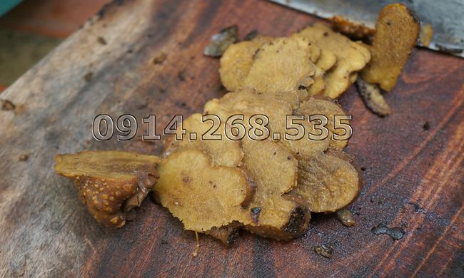 nấm ngọc cẩu 3