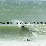 _DSC8065.thumb.jpg
