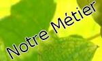 Métier Muscadet Domaine du Courtil
