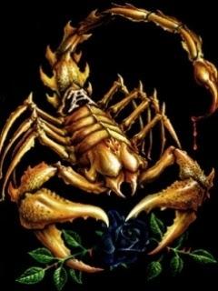 besplatne slike za mobitele free download životinje škorpion