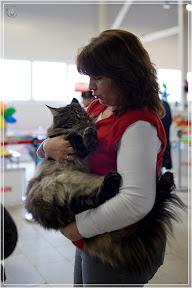cats-show-24-03-2012-fife-spb-www.coonplanet.ru-079.jpg
