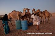 Al Hijla Bedouin Village, Marib