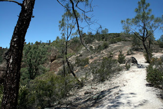 Photo: Condor Gulch Trail, nearing the top, May 23, 2009