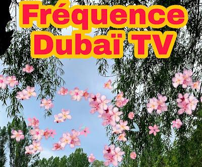 تردد قناة Dubai TV HD الجديد  2021 على نايل سات