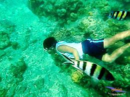 explore-pulau-pramuka-olp-15-16-06-2013-30