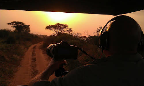 Why Travel to Uganda: Places to Visit & Things to See // Sunset on Safari - Photo Credit: Fixers Andy - Pixabay Free for commercial use-No attribution required