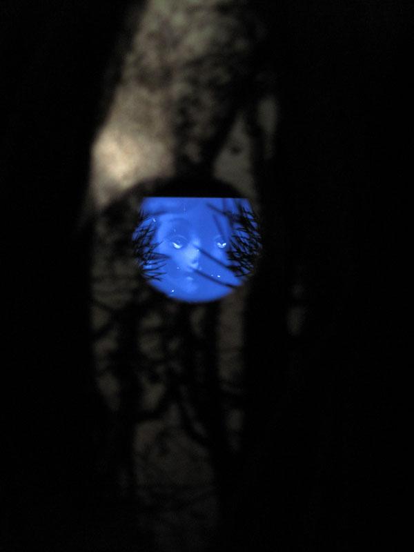 The Lost World, 2010, still image, Elodie Silberstein