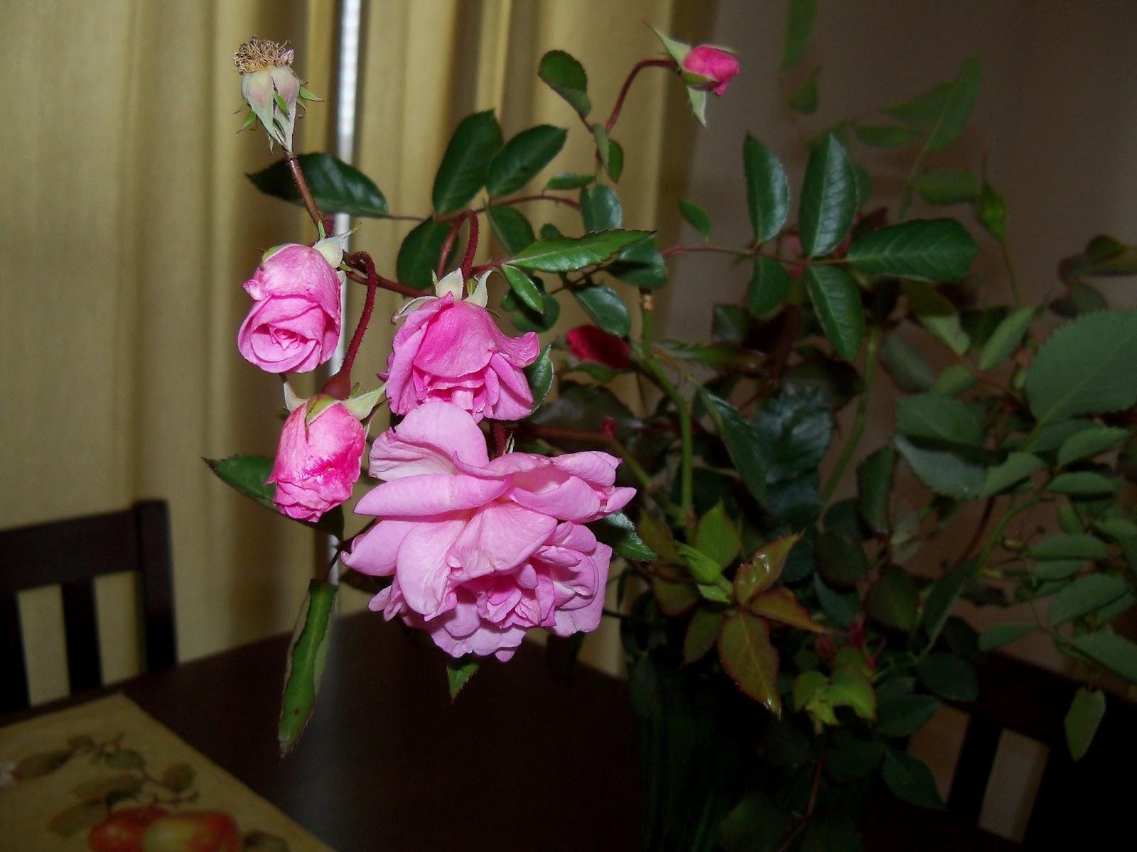 Bouquets - 115_1221.JPG