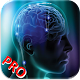 Puzzle My Mind Pro (game)