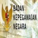 Badan Kepegawaian Nasional