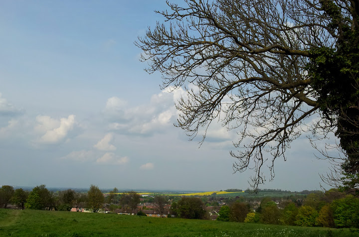 Royston from Therfield Heath