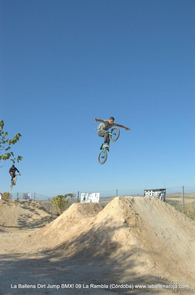 Ballena Dirt Jump BMX 2009 - BMX_09_0039.jpg